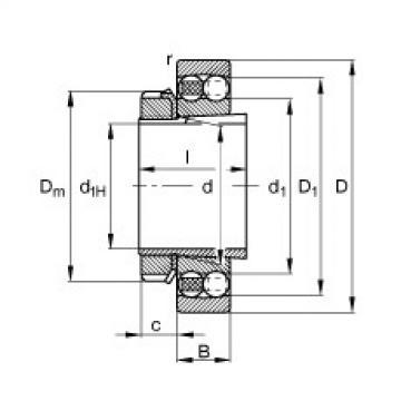 Bantalan 1311-K-TVH-C3 + H311 FAG