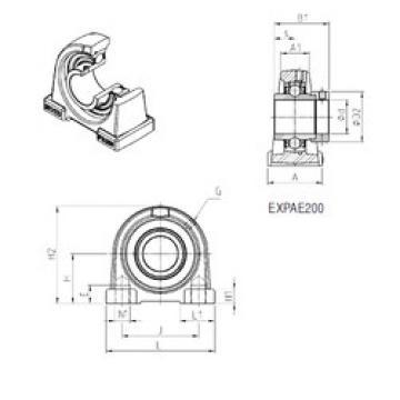 Bantalan EXPAE206 SNR